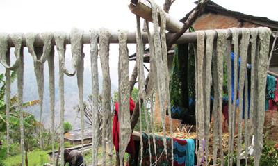 फोटो : प्यूठानको दुर्गम गाउँ स्याउलीवाङमा अल्लोको धागो बनाउनका लागि राखिएको लोक्ता ।