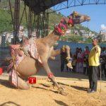 रुकुम महोत्सवको मुख्य आकर्षण मरुभुमीमा पाईने उट (फोटो फिचर)