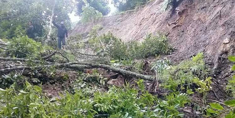 रोल्पामा एउटा घर पहिरोले भत्कियो, ३ वटा बाख्रा मरे लाखौंको क्षति