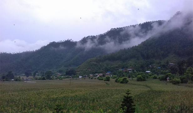 सल्यान छायाँ क्षेत्र गाउँपालिका वडा नं. ३ दारिमज्यूला। तस्बिर : तुलसीपुर अनलाईन